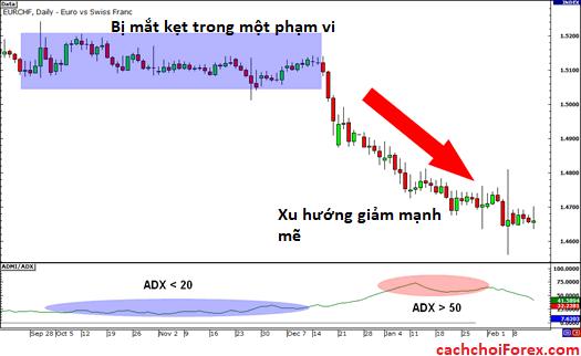 Chỉ số định hướng trung bình ADX và cách giao dịch với ADX