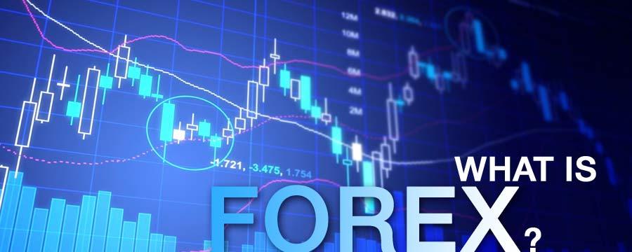 Đầu tư Forex tại Việt Nam và những điều cần biết trước khi đầu tư