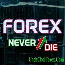 Đầu tư Forex cần bao nhiêu tiền