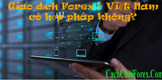Giao dịch Forex ở Việt Nam