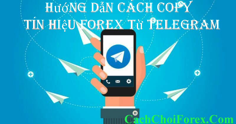 copy tín hiệu Forex