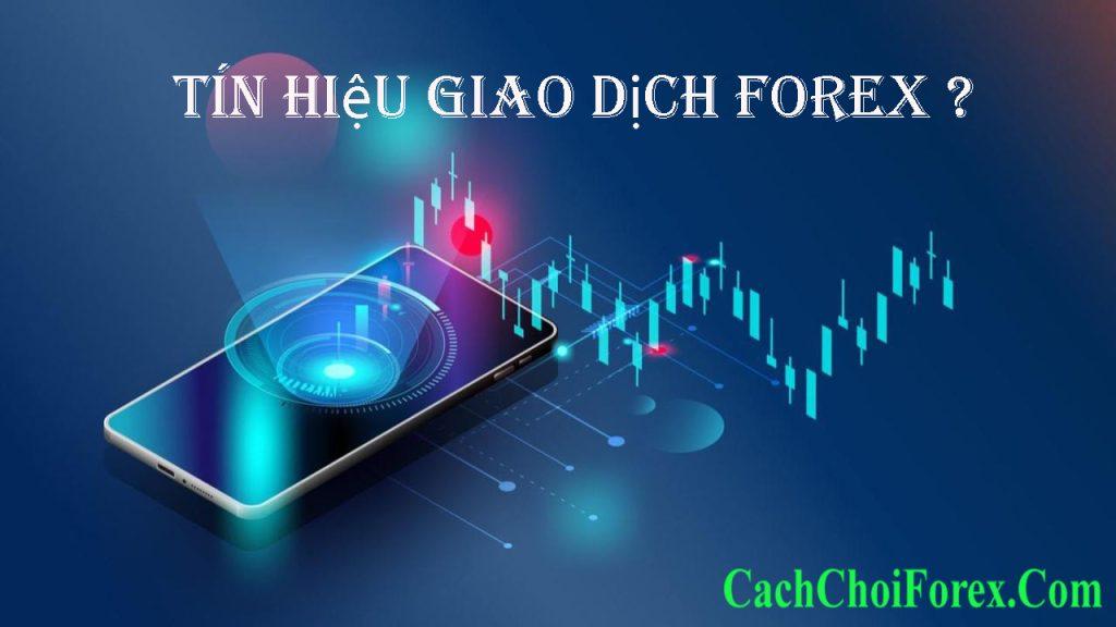 cung cấp tín hiệu Forex